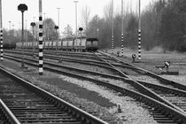 Güterbahnhof - freight depot von ropo13