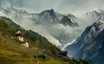 Swiss Alps by Elias Lefas
