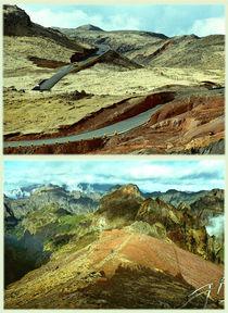 Madeira: Twice or nothing #3 von Leopold Brix
