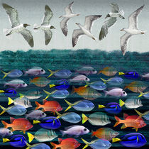 Creation 5: Brids in the sky, fish ink the waters by Dale Bargmann