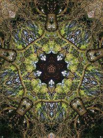 Magie des Baumes by alana
