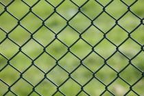 fence von mark severn