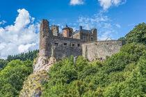 Schloss Oberstein von Erhard Hess