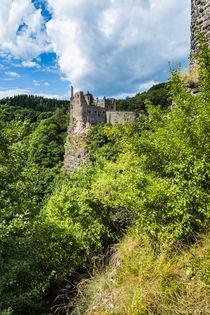 Schloss Oberstein 80 von Erhard Hess