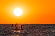 Sunset SUP von Nolas Kasof