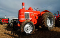 Orange Field Marshall von Rob Hawkins