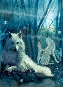 Ein Leben in Eis und Frost by Heidi Schmitt-Lermann