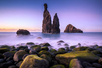 Stack Rock in Ribeira da Janela von Zoltan Duray