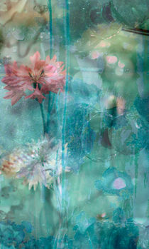 corn-flower von © Ivonne Wentzler