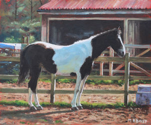 Painting-brown-and-white-horse-by-stable