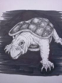 Turtle von Richie Montgomery