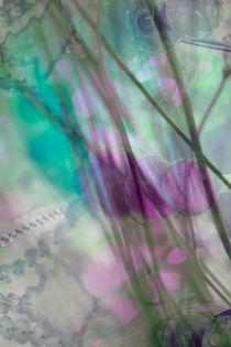 FLORENTINE by © Ivonne Wentzler