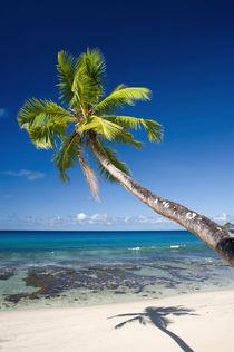 Paradise beach, Seychelles by Nicklas Wijkmark