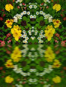 'Summer Flowers Reflect' by Robert Gipson