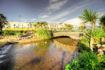 Dawlish Brook  by Rob Hawkins