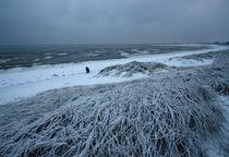 Föhr Winter in den Dünen von Jens Oschmann