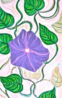Morning Glory in Pastel by Christine Chase Cooper