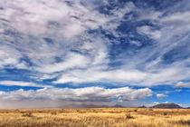 Dust storm in the Arizona Desert by Kathleen Bishop