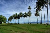 palmenkette von Lore Müller
