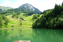 bergsee von Lore Müller
