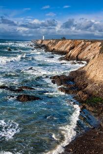 Mendocino Coastline by Kathleen Bishop