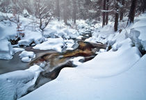 Snow by Martin  Slotta