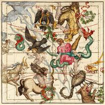 Hercules-sagittarius-delphinus-scorpius-caper-lyra-olor-and-other-constellations-dot-7800x7800