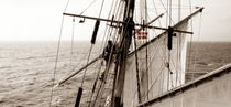 On Amphitrite's mizzen mast (sepia with colour highlight) von maritime-art