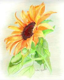 Sunshine on a Petal by Linda Ginn