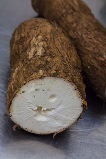 cut yuca root von Craig Lapsley