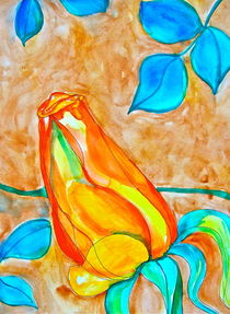 Red-Orange Rose Bud von Christine Chase Cooper