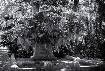 Bonavantura-cemetery-savanna-ga