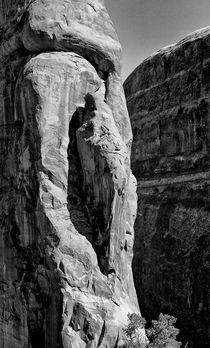 Madonna in the Rock by Ken Dvorak