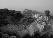 Point Lobos #1 von Ken Dvorak