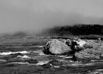 Point Lobos #5 von Ken Dvorak