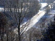 snow walk - schneespaziergang von mateart