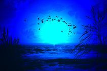 sea at night by mido