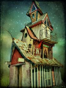 Starry night at the Little Mansion von barbara orenya