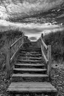 Steps To The Beach by David Pringle