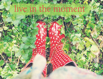 live in the moment von morningside