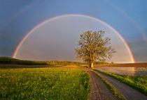 Regenbogen von Johann Belle