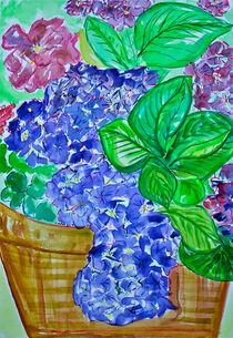 Hydrangea in Watercolor von Christine Chase Cooper