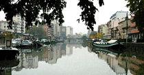Canal du Midi, Toulouse von Philip Shone