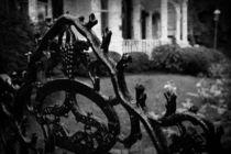 Wrought Iron Gate von Colleen Kammerer