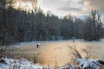 Schlüsselsee im Schaichtal - Naturpark Schönbuch im Winter von Matthias Hauser