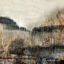 Landscape71