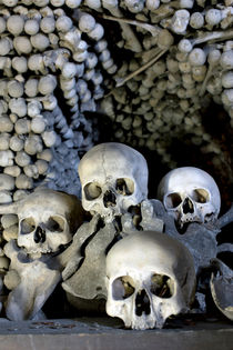 Skulls and Bones von morten larsen
