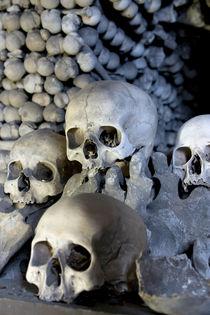 Skulls von morten larsen