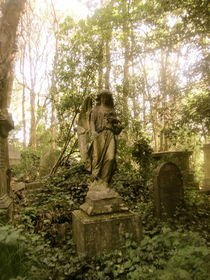 'Highgate Cemetery' by Carey Gibbons