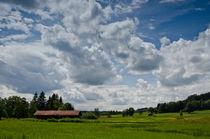 Sommerwolken by lisa-glueck